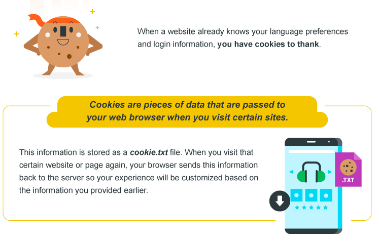 cookies on the internet